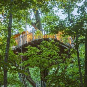 cabane-dans-les-arbres-proche-paris-foret