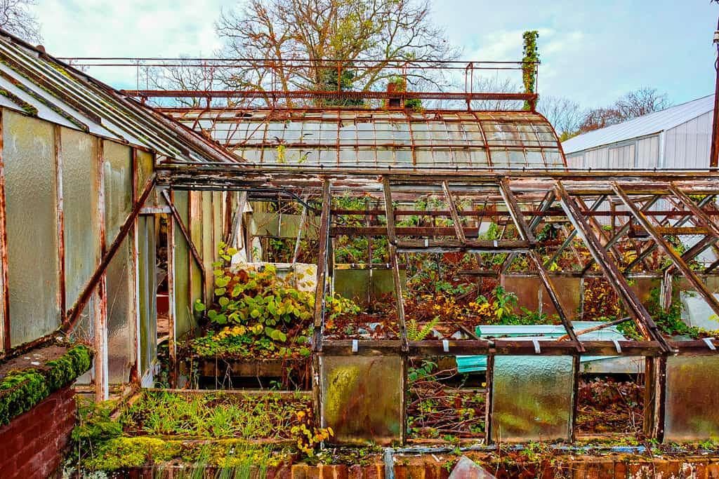Jardin-agronomie-tropicale-baalde-paris-12-bois-vincennes-sorties-06