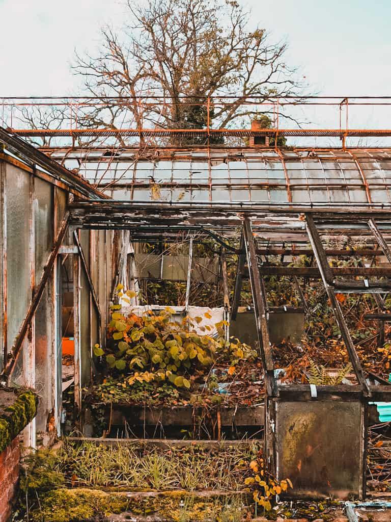Jardin-agronomie-tropicale-baalde-paris-12-bois-vincennes-sorties-07