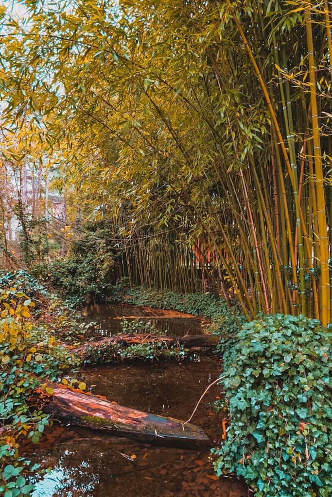 Jardin-agronomie-tropicale-baalde-paris-12-bois-vincennes-sorties-24