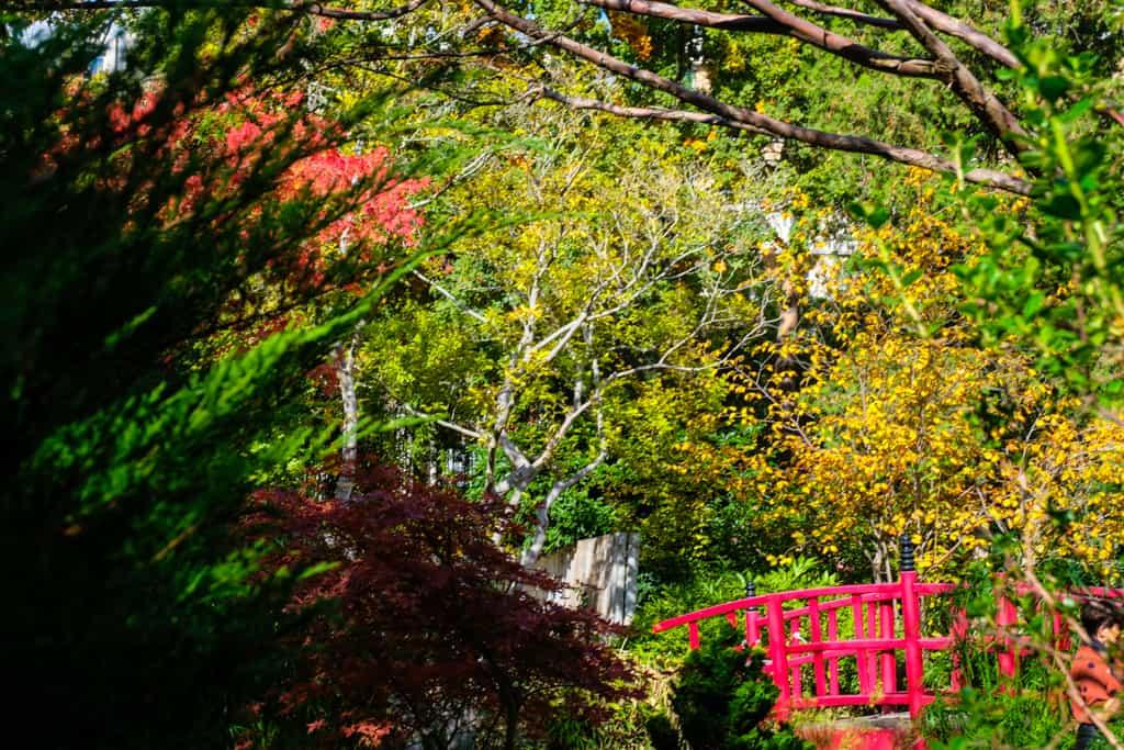 parc-amitie-jardin-japonais-rueil-malmaison-balade-autour-paris-03