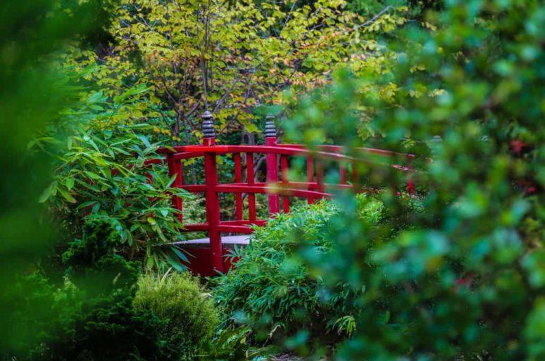 Le Parc de l'Amitié et son jardin japonais, Rueil Malmaison
